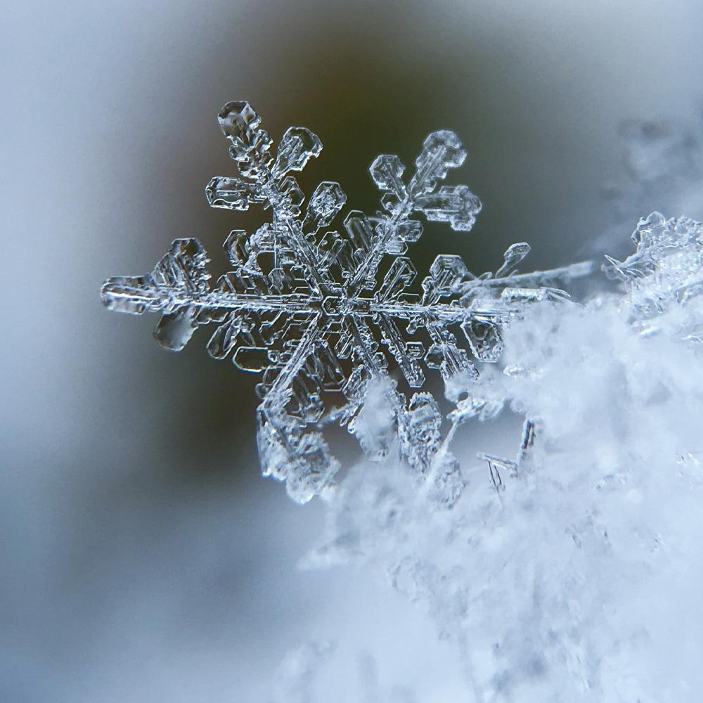 Winter & Summer Solistice 2019